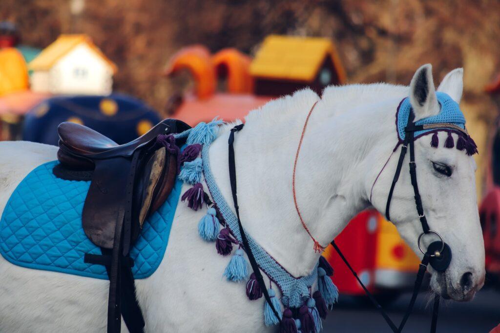 bílý kůň s modrou čabrakou a podsedlovou dečkou pod tmavým anglickým sedlem, v pozadí domečky