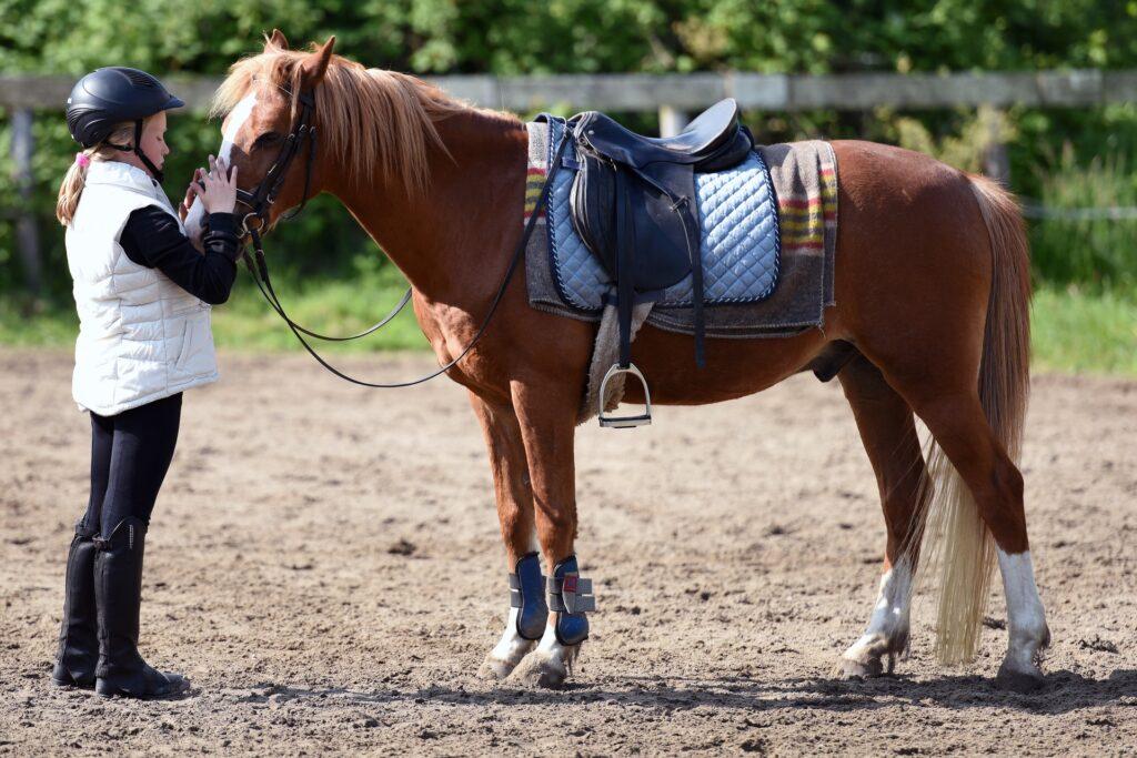 dětská jezdkyně v bílé vestě se svým koněm hnědé barvy