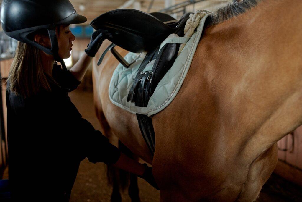 jezdkyně v černém s černou helmou, zapínající hnědému koni sedlo